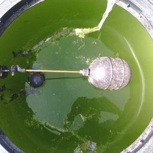 Lavado de cisternas tinacos de plastico en Guadalajara