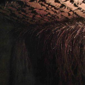 Mantenimiento limpieza y solución a raices dentro de aljibes