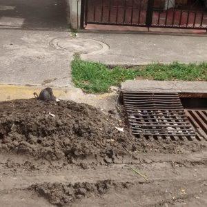 Limpieza desazolve retiro de lodos dentro de alcantarillas guadalajara zapopan tlaquepaque